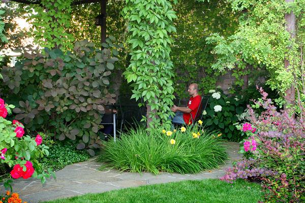 Ландшафт в цветах: красный, черный, серый, светло-серый, розовый. Ландшафт в стиле экологический стиль.