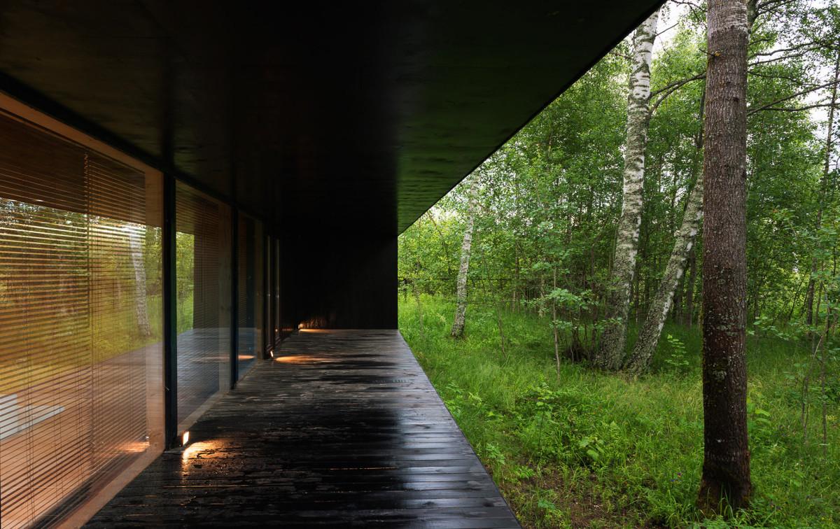 Архитектура в цветах: черный, бежевый. Архитектура в стилях: минимализм, экологический стиль.