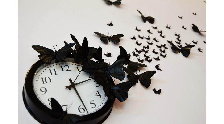 Декор черными бабочками